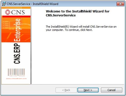 CNS service installation
